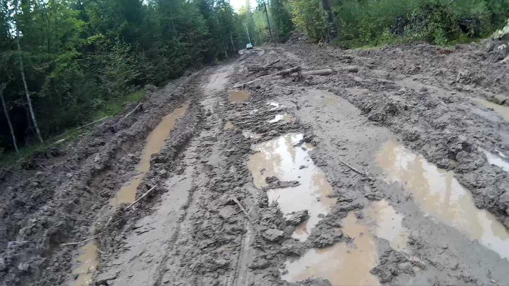 Нива в грязи